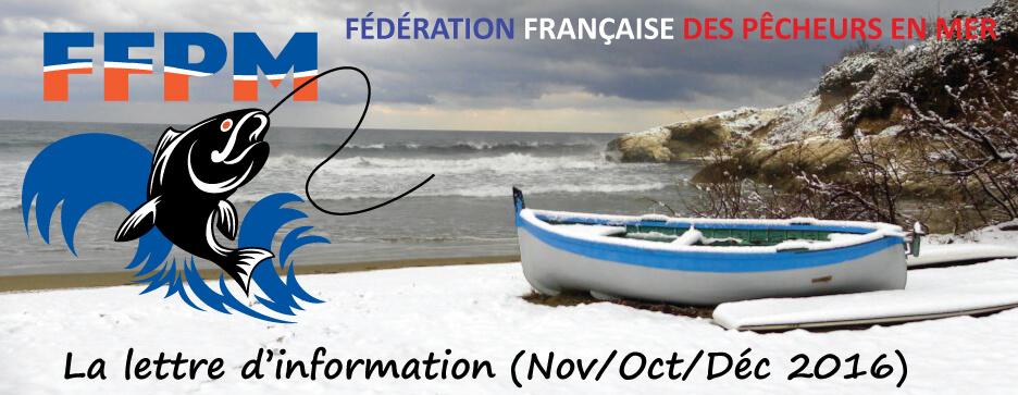 Newsletter n°03 – Octobre-Novembre-Décembre 2016