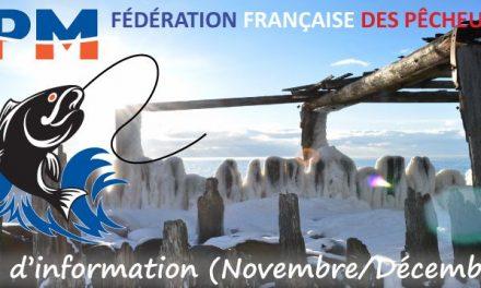 Newsletter n°21 – Novembre-Decembre 2019