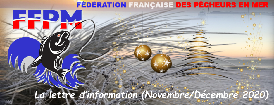 Newsletter n°26 – Novembre-Décembre 2020
